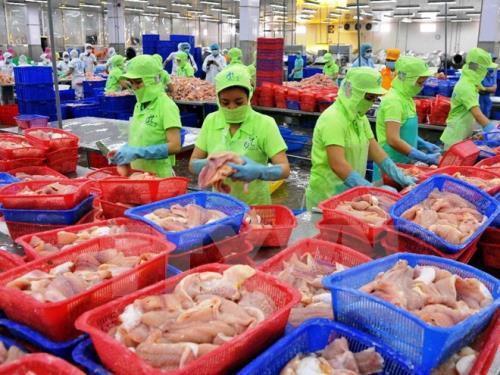 Brunei là thị trường nhỏ đối với hàng xuất khẩu của Việt Nam. Ảnh minh họa: TTXVN