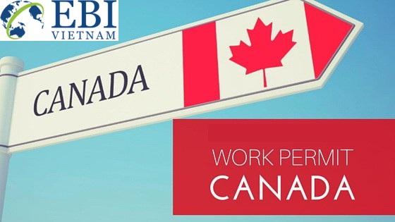 """du học Canada theo diện SDS sẽ cho phép du học sinh ở lại làm việc trong 3 năm với """"Work Permit"""""""