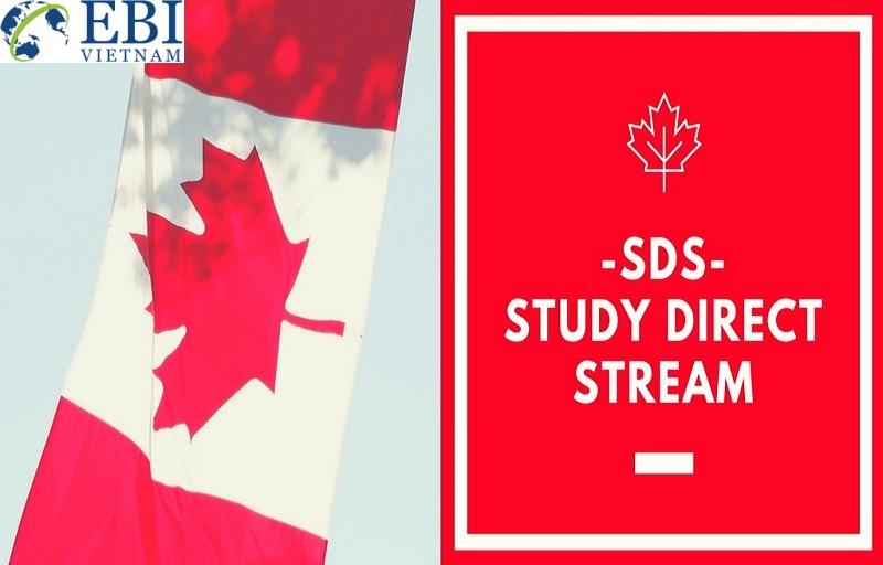 Diện SDS giúp sinh viên du học Canada có nhiều ưu thế hơn