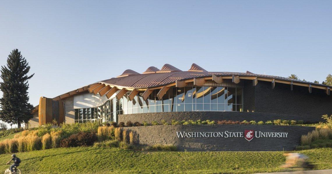 Học gì tại WSU – Đại học giữa lòng thủ đô nước Mỹ