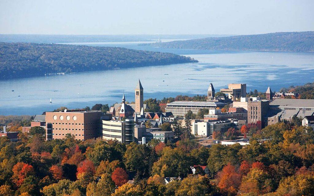 Những trường Đại học đặc biệt nhất nước Mỹ đáng để bạn khám phá 1