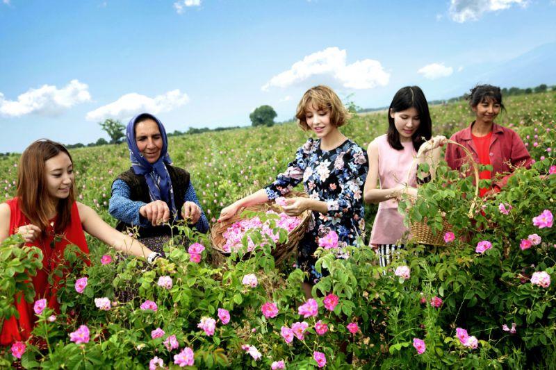 Bulgaria được mệnh danh là 'Xứ sở hoa hồng'
