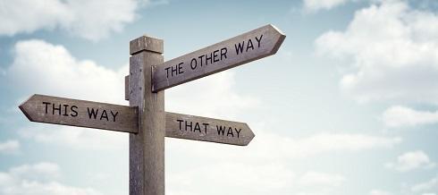 Có nhiều hướng đi cho bạn lựa chọn