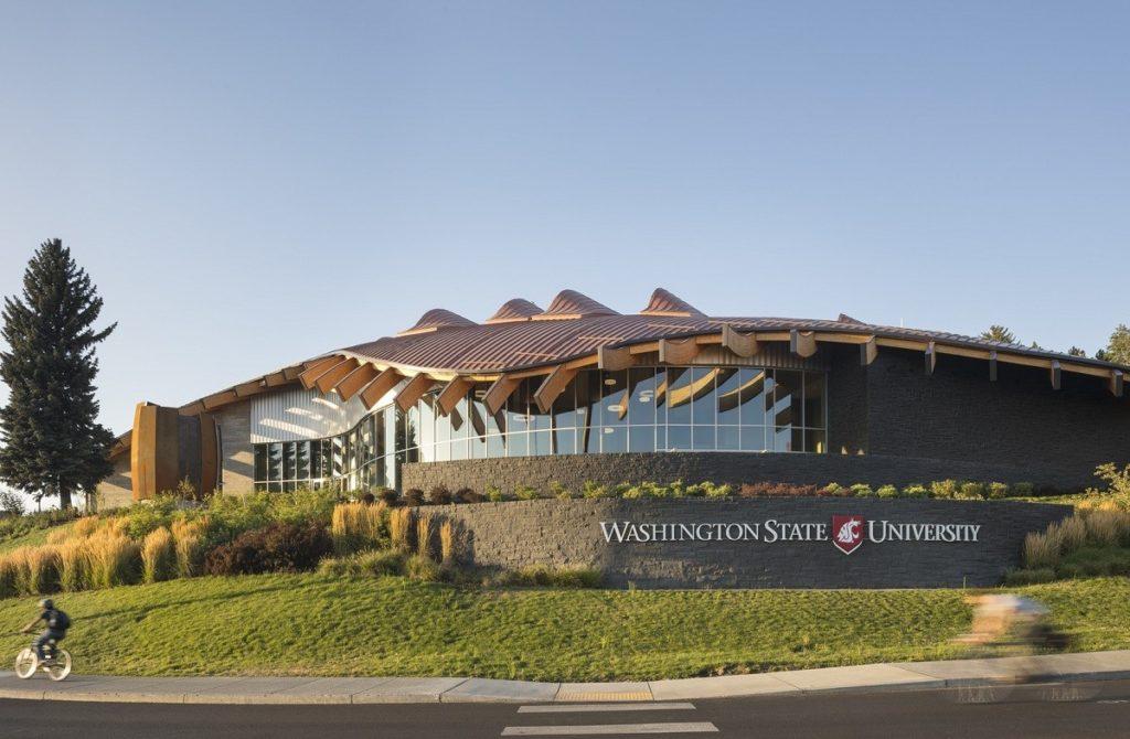 Đại học WSU