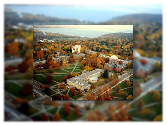 Đại học Cornell đã có hơn 4000 khóa học với 70 chuyên ngành đại học, 93 lĩnh vực về nghiên cứu
