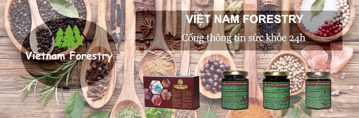 Việt Nam Forestry